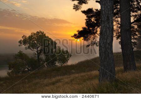 Gold Farben eines Morgengrauen