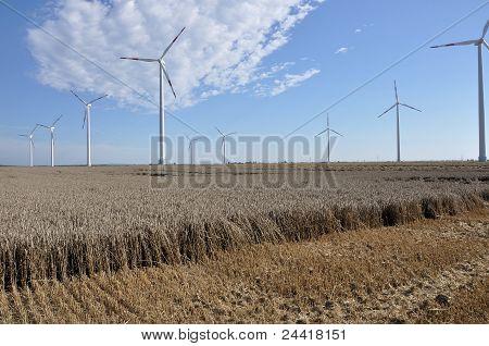 energy plant in stubble, saxony
