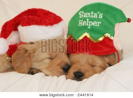 Santa And Helper