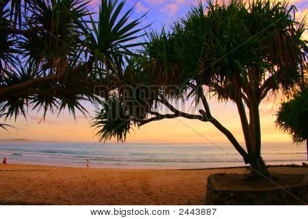Sunshine Coast, Australia..