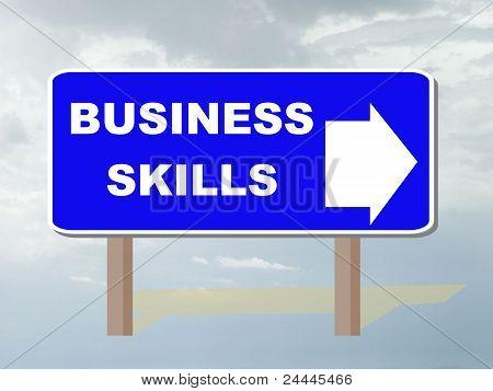 Habilidades de negócios