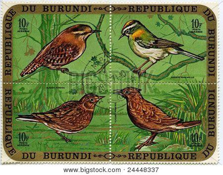 Vogels 1