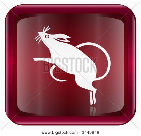 Rata Zodiaco icono rojo