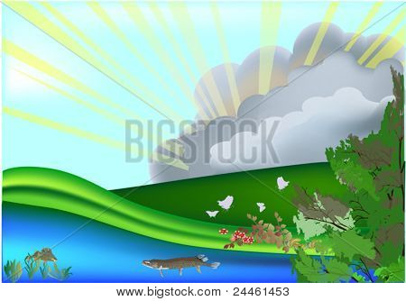 illustration with sunbeams in forest near water