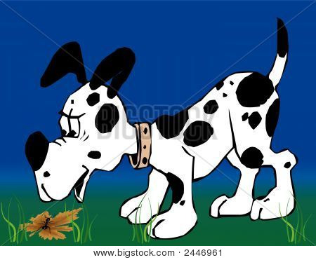 Toonimal Dog