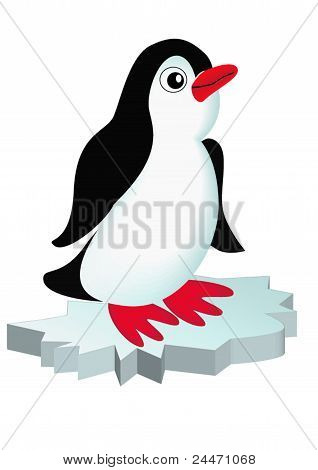 Penguin On Block Of Ice Is Insulated