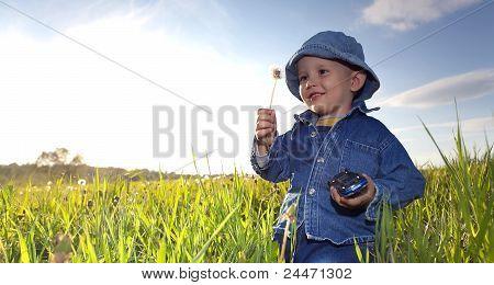 Kleine Junge auf Wiese