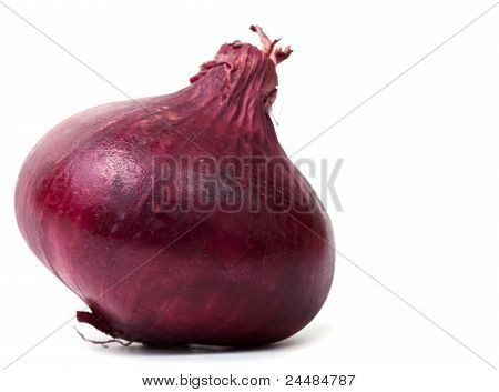 Red Onion Bulb On White Background Isolated