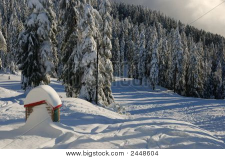 Mt. Seymour Ski Resort With Fresh Snow, A Little Hut In The Foreground