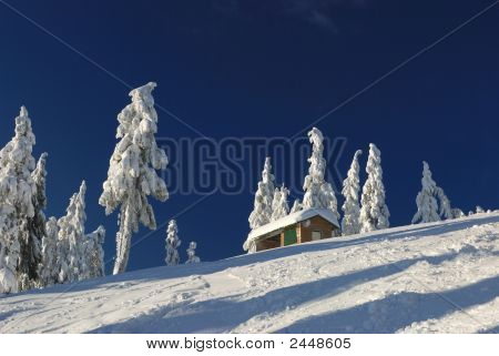 Mt. Seymour Ski Resort With Fresh Snow