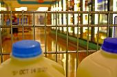 stock photo of grocery store  - Shopping for food in the supermarket - JPG