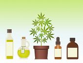 Marijuana Plant And Cannabis Oil. Medical Marijuana. Hemp Oil In A Glass Jar. Cbd Oil Hemp Products. poster
