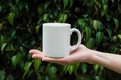 Young Caucasian Woman Holding In Hand White Mockup Mug On Green Tree Foliage Nature Background In Fo poster