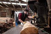 Good Looking Man In Chequered Shirt Pushes Log Through Band Saw In Wood, Saw Mill poster