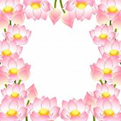 Nelumbo Nucifera - Indian Lotus Border, Sacred Lotus, Bean Of India, Egyptian Bean. National Flower  poster