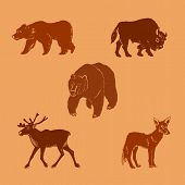 Vector Illustration Of Wild Animals. Hand Drawn Mammal Silhouettes. poster