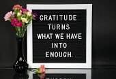 Inspiration Quote About Gratitude On Message Board With Carnation Bouquet In Black Vase poster