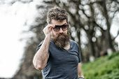 Guy Looks Cool With Stylish Sunglasses. Man With Beard And Mustache Wears Sunglasses, Defocused Back poster