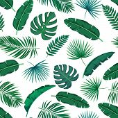 Vector Green Tropical Leaves Seamless Pattern. Jungle Exotic Banana Leaf, Philodendron, Areca Palm A poster
