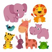 Animals Character Design, Wildlife Collection, Illustrations, Zoo poster
