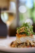 picture of lobster tail  - Sauteed Sea Bass served on a bed of vegetable ragout - JPG