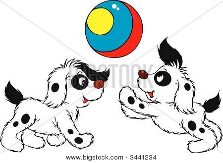 Playing Puppies