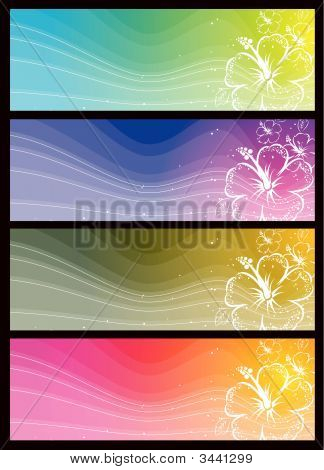 Modern Color Banners