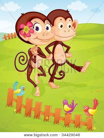 illustration of two monkeys walking on green lawn