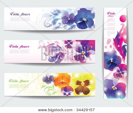 Viola flower vector background .  Set of floral cards.