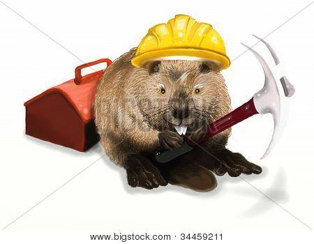 Beaver worker