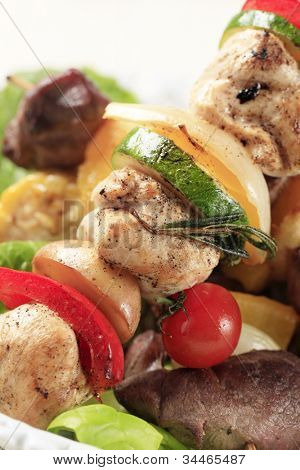 Detail of tasty grilled kebab skewer