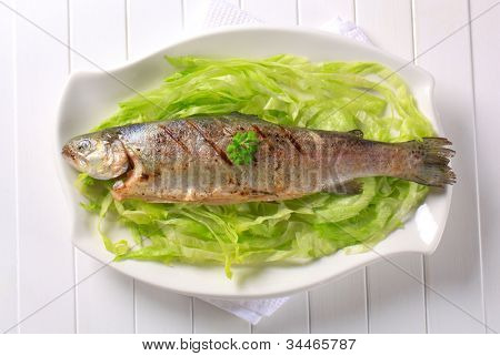 Grilled trout on lettuce on a white decorated plate
