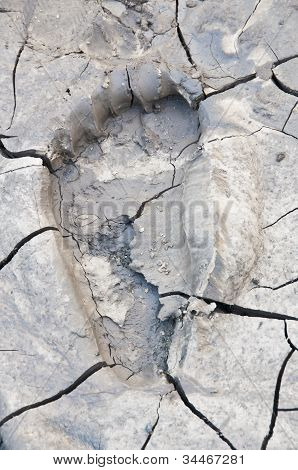 Footprint on dry mud.