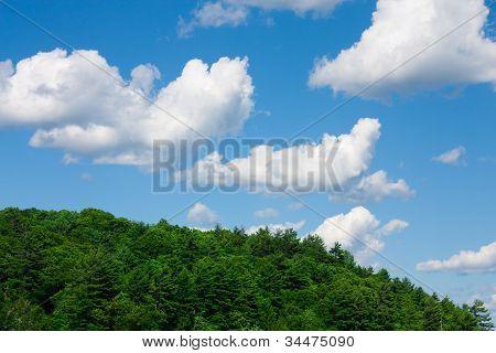Muskoka summer sky