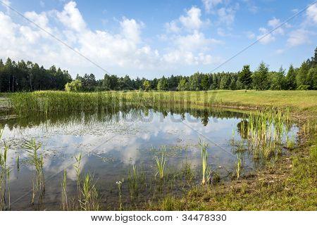 Verão polonês paisagem com Lago
