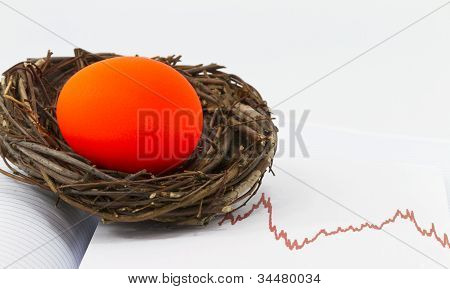Investment Nest Egg In Danger