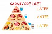 Carnivore Diet Pyramid Vector Illustration For Banners Or Templates. poster