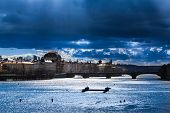 Rainy Dramatic Sky Over Townscape And River At Prague, Czechia (copy Space) poster