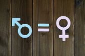 Male And Female Symbols Cut Out Of Paper And An Equal Sign On A Wooden Background. The Concept Of Ge poster