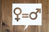 Male And Female Symbols And An Equal Sign In White Dialogue Box Cut Out Of Paper On A Wooden Backgro poster