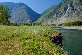 Summertime Landscape Of Chulyshman River Valley In Altai Mountains, Siberia, Russia poster