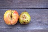 Fresh Bio Apple And Pear Ugly With Defects Lie On A Wooden Table. No Ugly Food. Place For Text poster