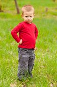picture of spoiled brat  - Cute angry little boy standing in the middle of the meadow on beautiful spring day - JPG