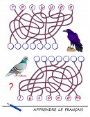 Learn French. Logic Puzzle Game With Cute Birds For Study French Language. Find Correct Places For L poster