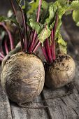 Fresh Organic Beet, Beetroot, Close Up. Grey Rustic Wooden Background. Close Up, Vertical Compositio poster