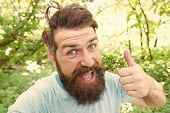 Summer Fun. Bearded Guy In Park Forest. Bearded Hipster. Crazy Bearded Mature Man In Natural Environ poster