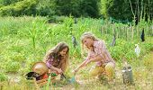 Planting And Watering. Girls Planting Plants. Agriculture Concept. Growing Vegetables. Planting Vege poster