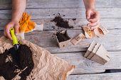 Potting Soil For Plants. Seeding Pot Using Black Soil, Old Wood Background. poster
