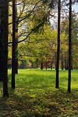 stock photo of tsarskoe  - The Catherine Park Pushkin Tsarskoe Selo Saint - JPG