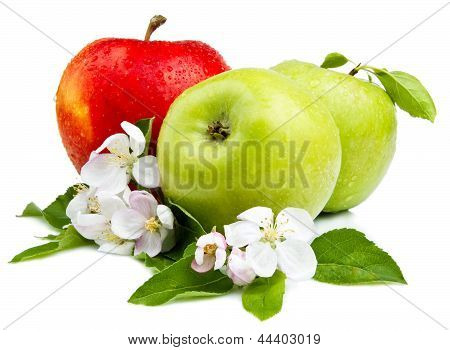 Two Green Apple And Red Apples With Flowers, Leaf And Water Droplets On A White Background